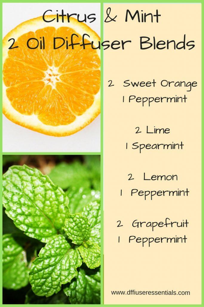 citrus and mint easy 2 drop diffuser blends