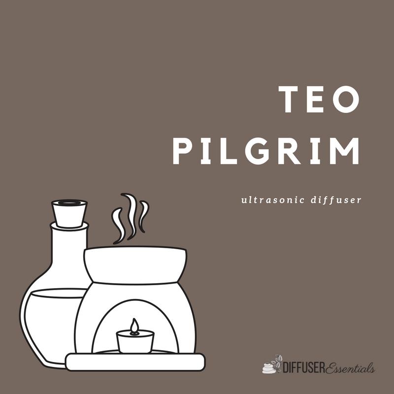 Pilgrim Teo Diffuser